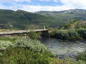 Ved Myrdal