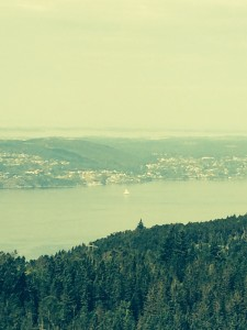 Utsikt fra Fløysfjellet